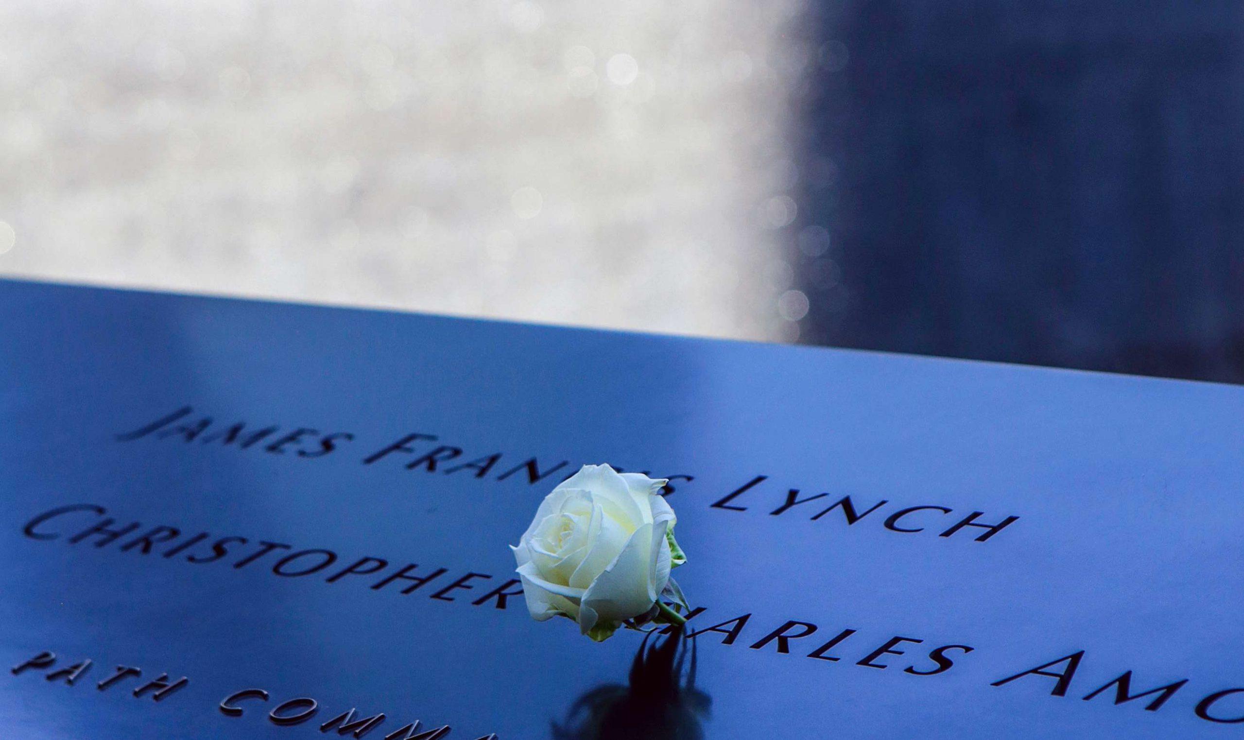 White Roses in 9/11 Memorial