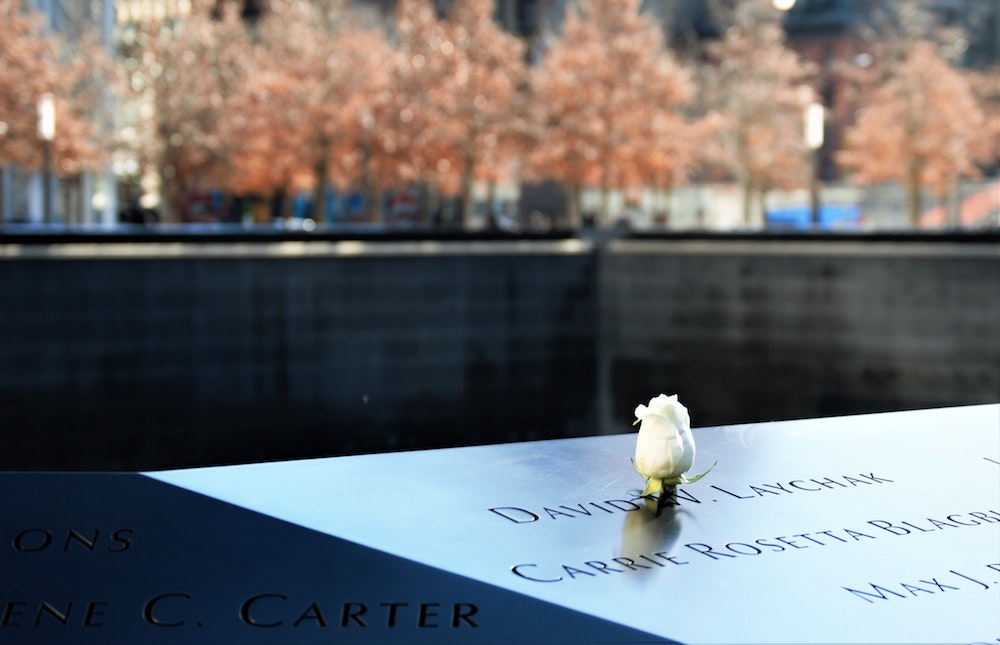 Rose at the 9/11 Memorial waterfall
